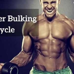 Buy Beginner Strength and Bulking Cycle